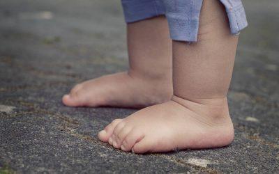 A propósito de nuestros pies, … nuestras raíces.
