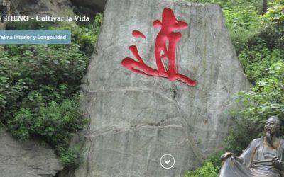 Yang-Shen: el Arte de Cultivar la Vida