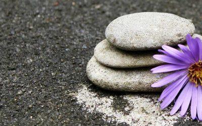 """""""La Gratitud es el sentimiento que más humildad concentra y más amor expande""""."""